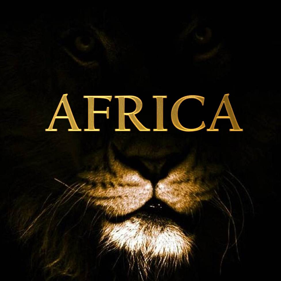 AFRICA-liongold